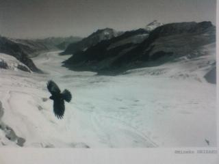 織作峰子写真展「ユングフラウの光と風 」/ペンタックスフォーラム 織作峰